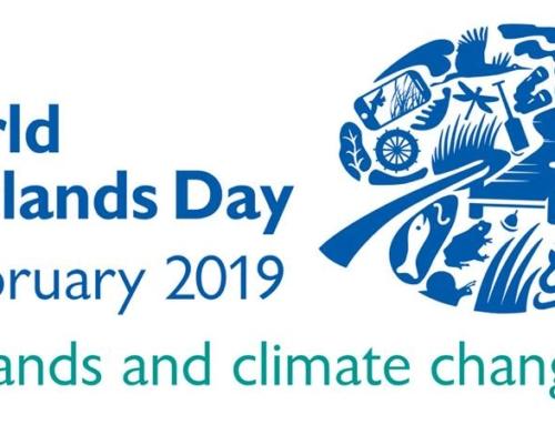 2 Febbraio 2019, Giornata mondiale delle WETLANS, zone umide e mutamenti climateci