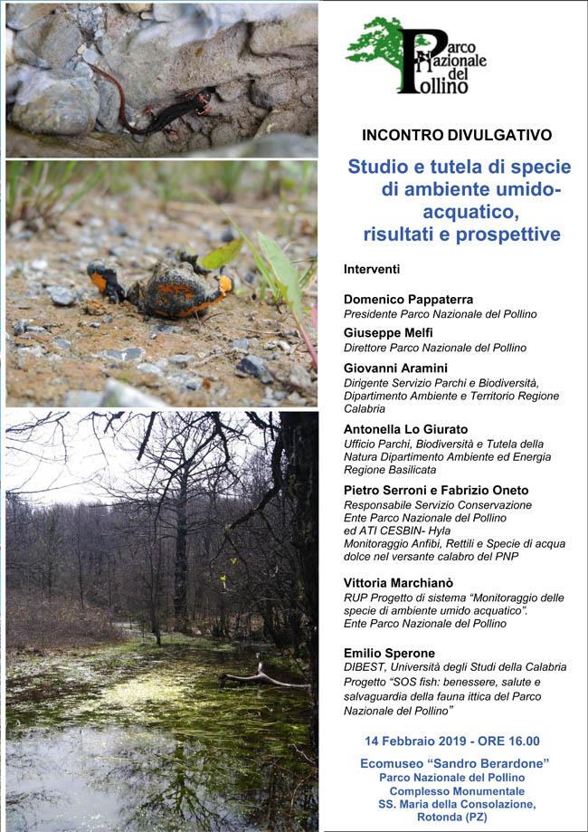 Studio e tutela di specie di ambiente umido-acquatico, risultati e prospettive